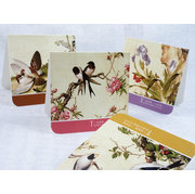 BC004 cards of classic birds and flowers