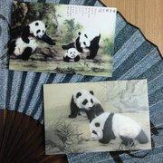 Great Panda Postcards Set of 8 PSC082