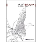 唯美白描精选:禽鸟写生(2) Outlining Drawing Selection: Bird Skeches VOL.2