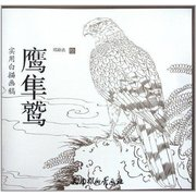 实用白描画稿:鹰隼鹫  Practical Outlining Drawing Samples: Eagles, Falcon and Buzzards